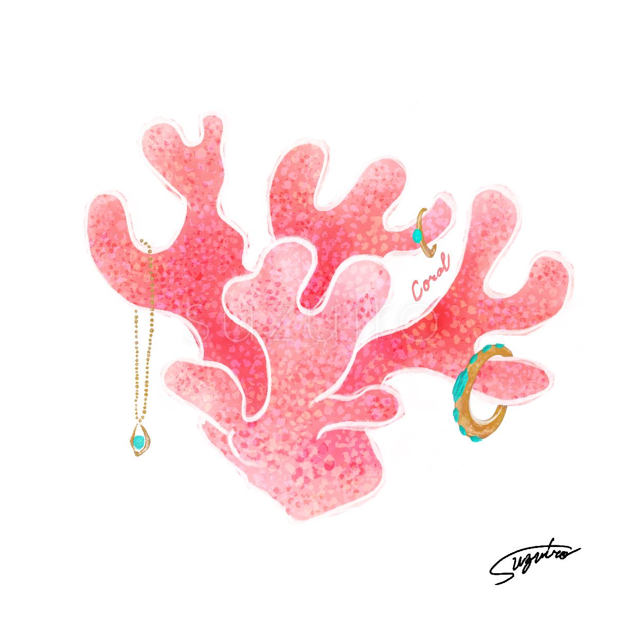 coral_suzuiro